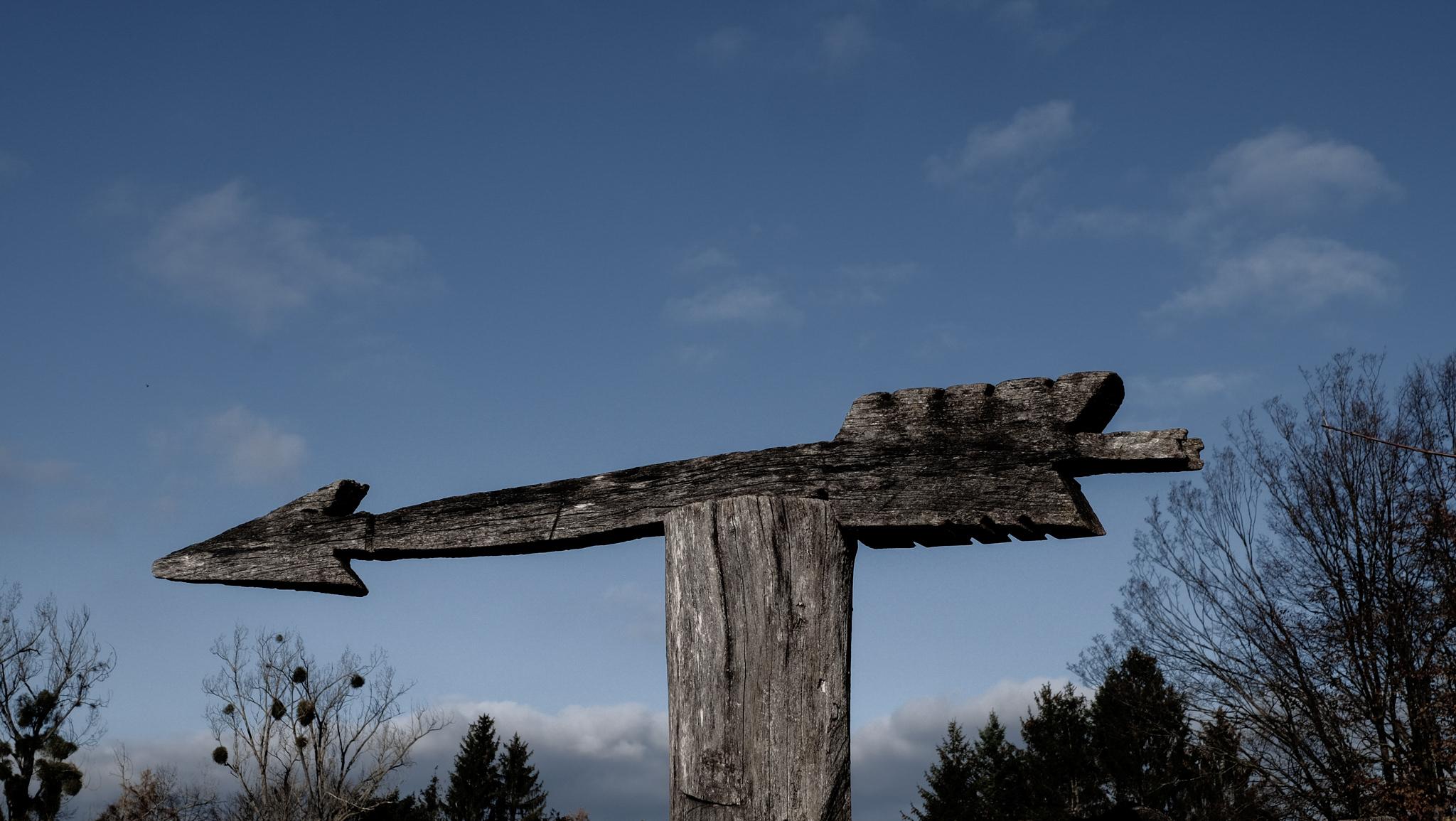 Der Pfeil aus Holz dient als Untermalung des Konzeptes Führ dich von Brita Nerz Coaching